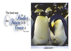 Create Penguin Quote Postcard